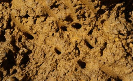 """Impronte di picconi in palco di cervo visibili sulle pareti della cosiddetta """"Buca delle impronte"""""""